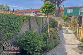 Garten mit viel immergrünen Pflanzen